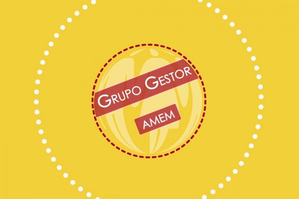 GRUPO GESTOR AMEM